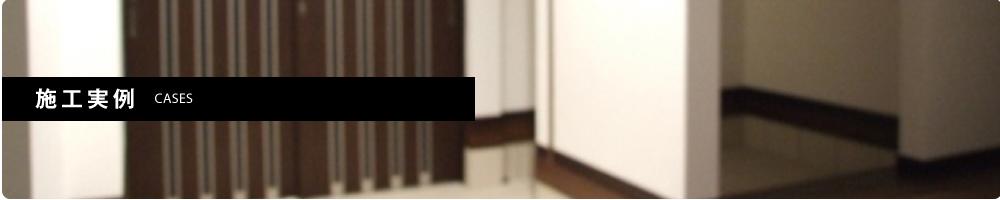 sub-sekoujirei-main